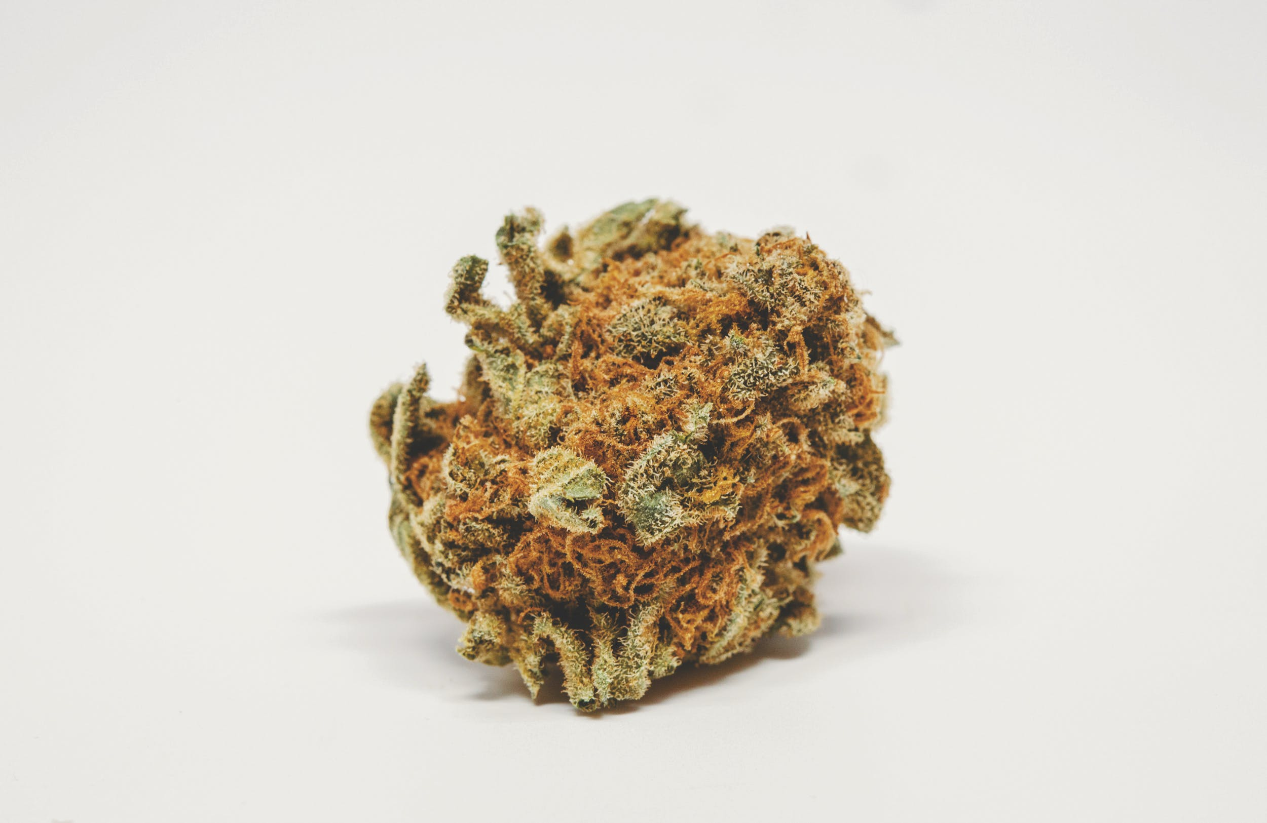 Best Kush Strains 7 These are the Best Kush Strains on the Planet
