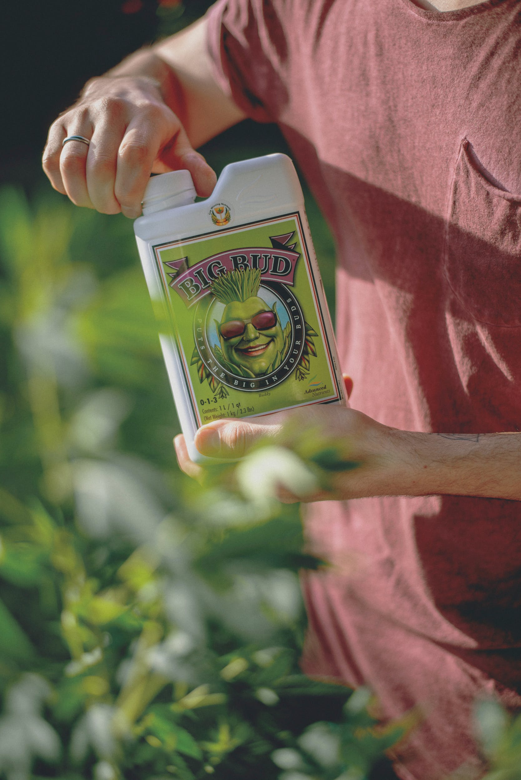 Best Weed Fertilizer 21 Grow Like a Pro with the Best Weed Fertilizers