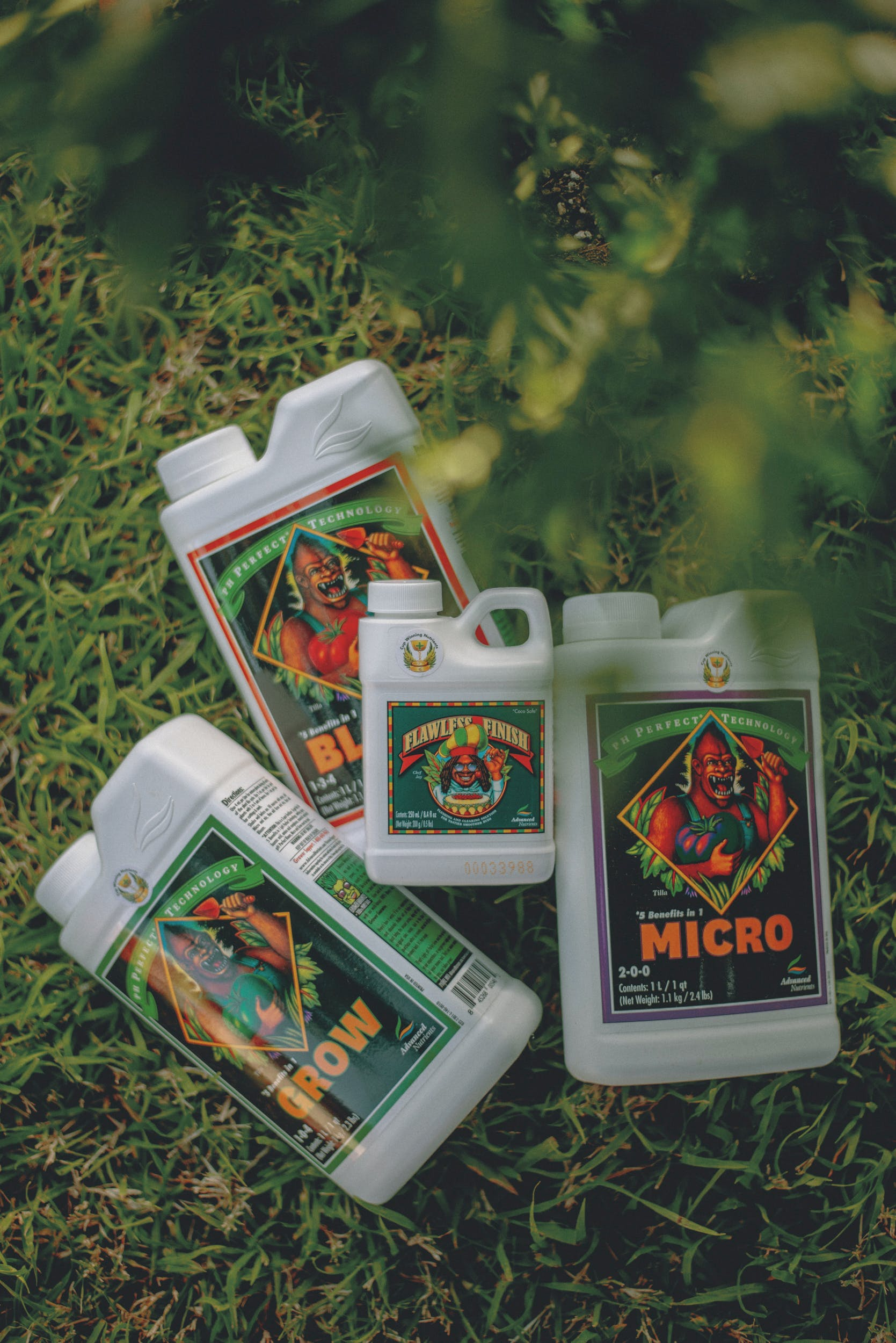 Best Weed Fertilizer 29 Grow Like a Pro with the Best Weed Fertilizers