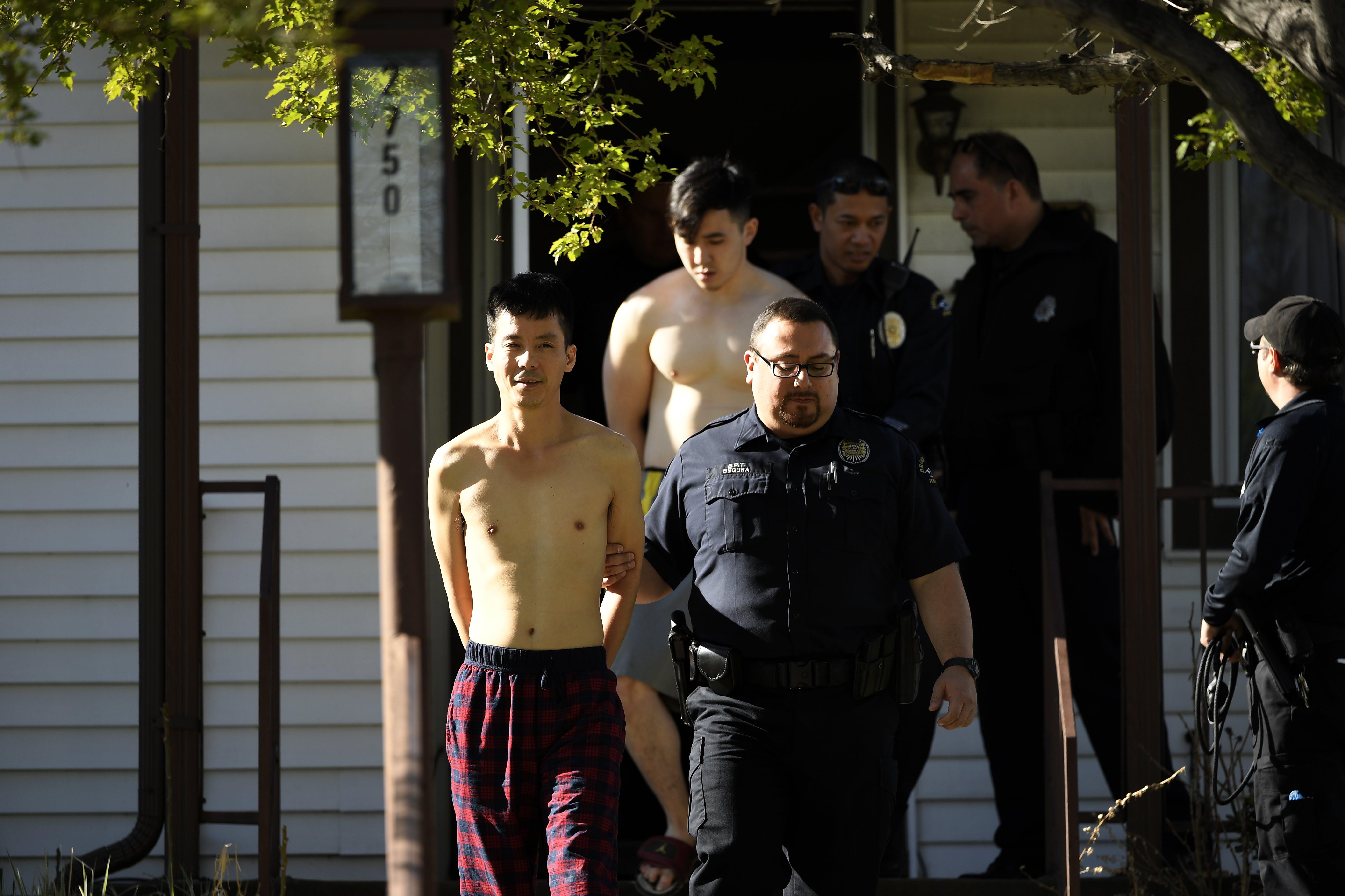 Weird weed arrests